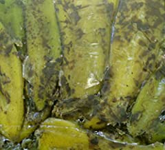 2 Lb. Flame Roasted Hatch Green Chile, Medium Flavor