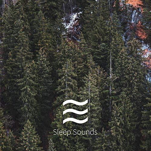 ASMR Ocean Sounds