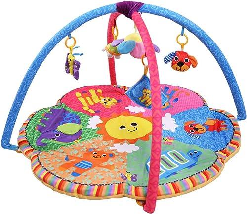 Mr. Fragile Gimnasios para Bebé, Alfombras de Juego en el Parque de Animales con 5 Juguetes Desmontables y Música, para Bebés Recién Nacidos de 0-24 Meses de Regalo para Bebés, 90  90  50 Cm