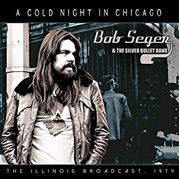 A Cold Night in Chicago