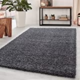 Abaseen Small Large Shaggy Modern Rug in 12 Different Colour and 4 Different Sizes (Dark grey, 160x230 cm (5'3''x7'7''))