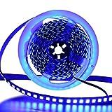 XUNATA - Tira LED SMD 5054 (más brillante que 5050), color azul, IP65, resistente al agua, autoadhesiva, ideal para jardín,...