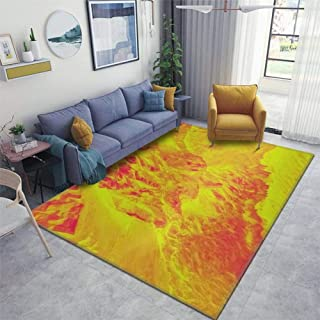 Area Runner Rug Soft Indoor Nursery Rug Non-Slip Carpet for Living Room Movie Study Rug Yoga Pad Floor Accessories Home De...