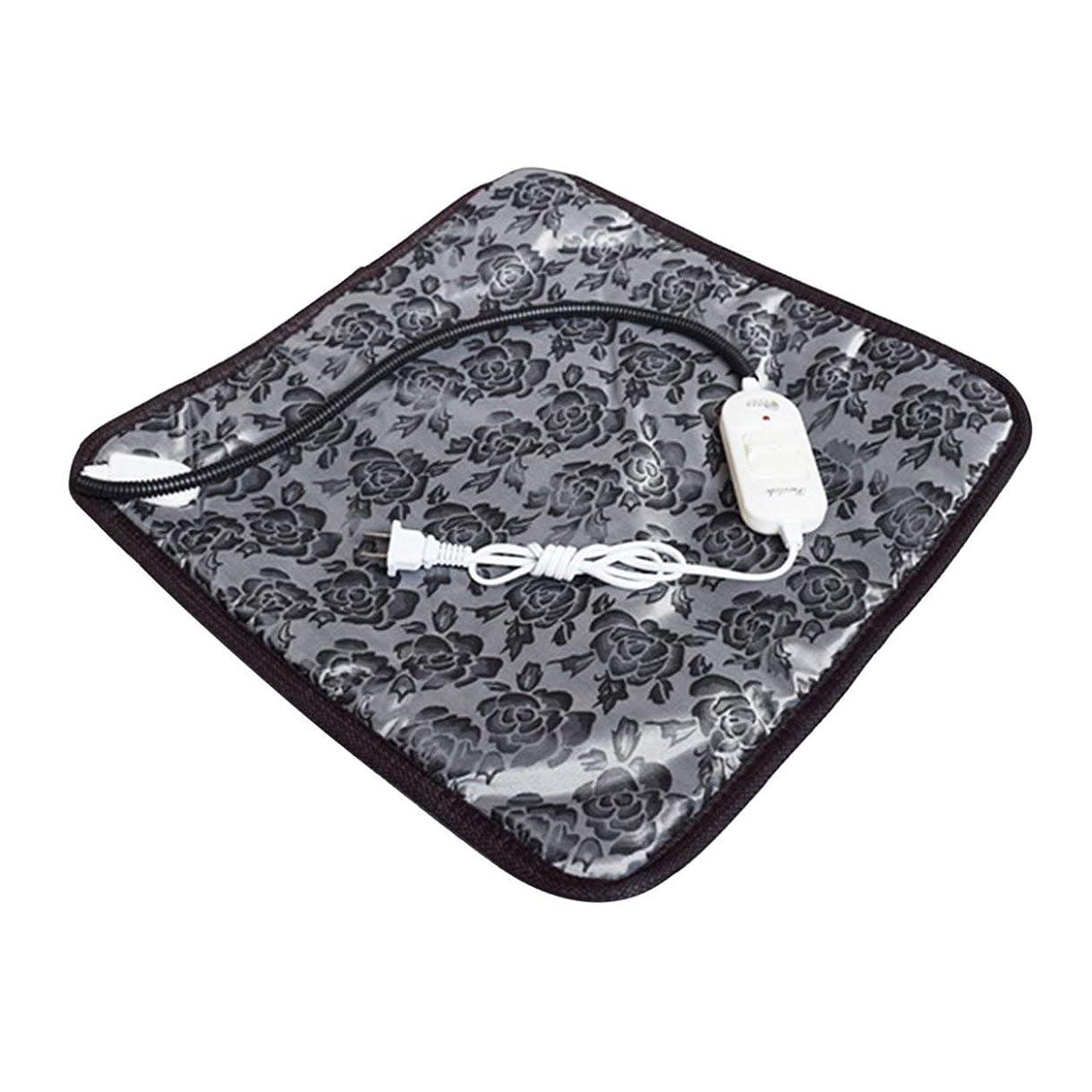 毛布甘やかす殺しますSaikogoods 快適な防水オックスフォード布ペット電気パッドは冬は暖かい温水暖房マット犬猫バニーベッドをキープブランケット 黒