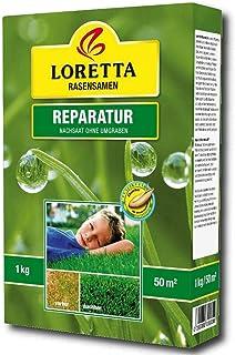 Loretta Reparaturrasen 2 kg Rasensamen Grassamen Nachsaat Rasen Reparatur