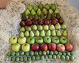 Caja Toda Nuestra Fruta 10 kilos - Producción propia Venta directa Producto fresco