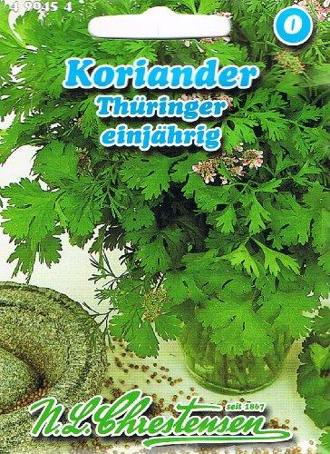 Koriander Thüringer einjährig