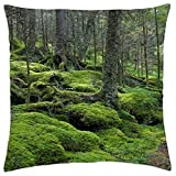 Baxter Creek Trail in Great Smoky Mountains National Park, Tennessee - Throw Pillow Cover Case (18
