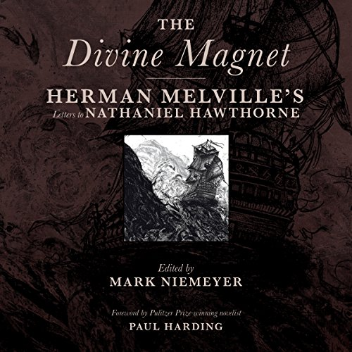 The Divine Magnet audiobook cover art