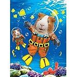 PopShots Studios Geburtstag Humor Grußkarte Googlies Wackelaugen Hamster Taucher 12x17cm