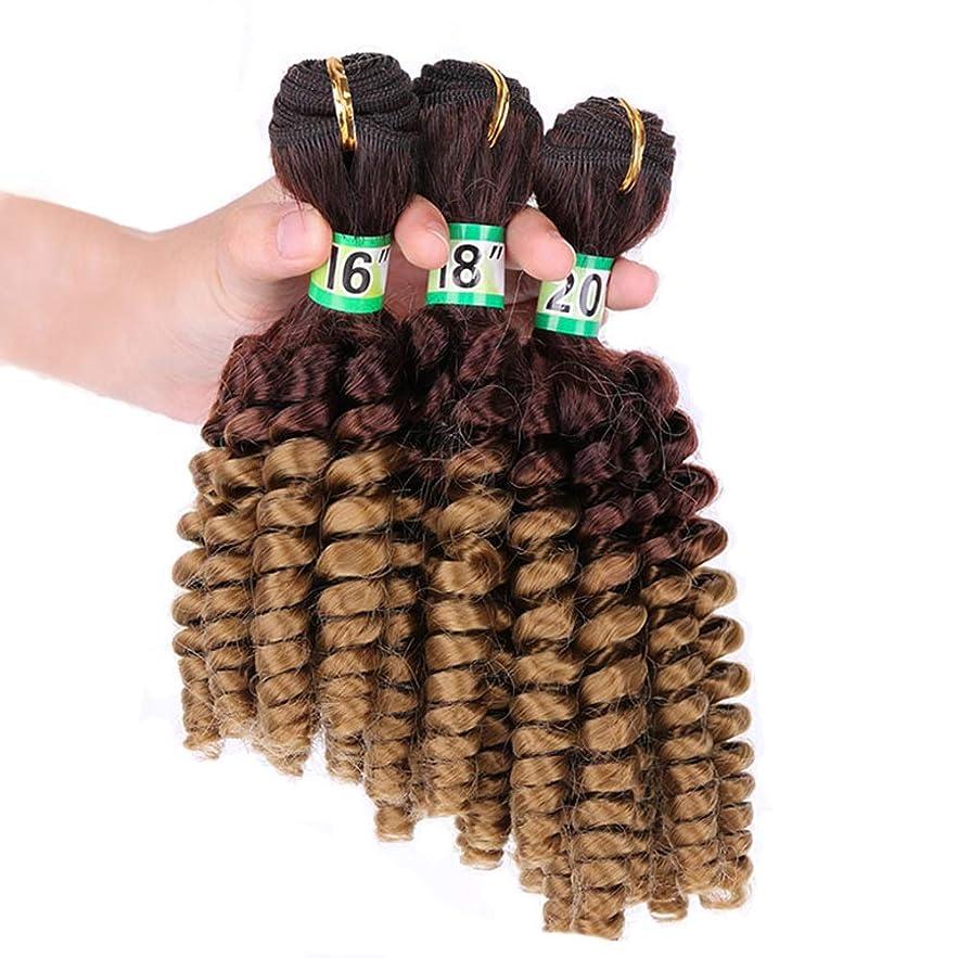 ファブリックストリーム鉱夫Yrattary Funmi巻き毛3束 - T427#茶色の髪の束ゆるい巻き毛の毛延長70 g/pcフルヘッド複合毛レースのかつらロールプレイングかつらロングとショートの女性自然 (色 : ブラウン, サイズ : 16