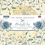 The Paper Boutique The Moonlight Song