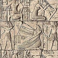 簡単なアプリケーションリムーバブル壁紙 エンボス3D効果古代エジプトの壁紙レンガ石3Dビニールウォールペーパーホームデコレーション (Color : Z00100, Dimensions : 10mx53cm)