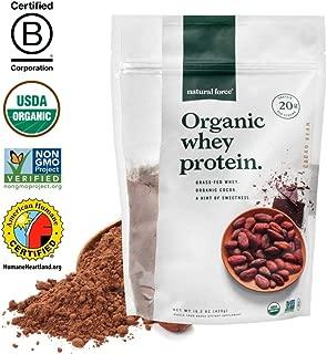 Best organic protein powder benefits Reviews