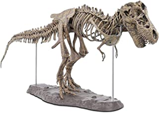 Best t rex skeleton toy Reviews