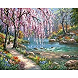 Pintura de bricolaje por números paisaje casa pintura al óleo para adultos en lienzo dibujo para colorear por número decoración del hogar A1 50x65cm
