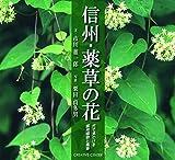 信州・薬草の花