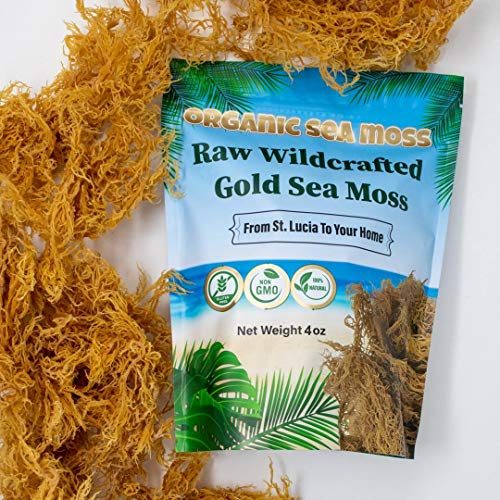 Organic Sea Moss Dried Irish Sea Moss - Natural Wildcrafted, Pure, Non-GMO & Gluten-Free Sea Moss - Makes Perfect 5 Jars Of Sea Moss Gel - Support Bones & Joints, & Immune System - 4 oz