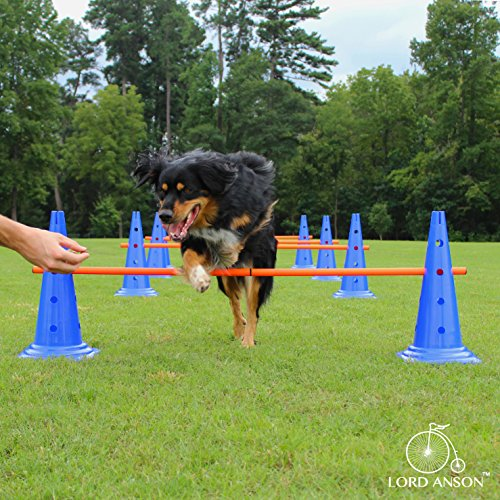 Lord Anson Dog Agility Hurdle Cone Set - Canine...