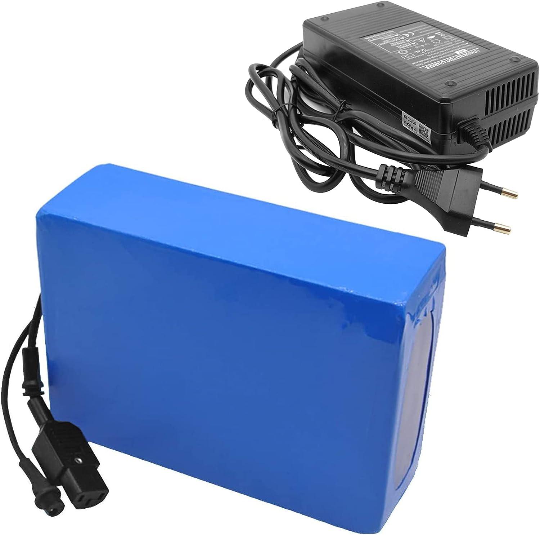 TGHY Batería de Litio para Bicicleta Eléctrica 12V 24V 36V 48V 60V 72V Batería de Iones de Litio con Cargador y BMS Batería 8Ah 10Ah 15Ah 20Ah para Carrito de Golf Kart Silla de Ruedas