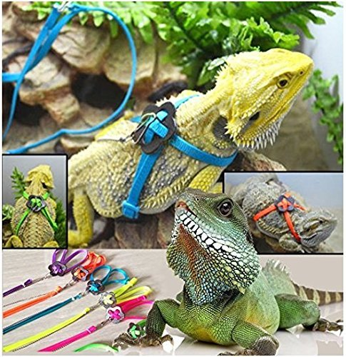 Serdokntbig Adjustable Reptile Lizard Harness Leash Adjustable Multicolor Light Soft Fashion