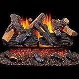 Duluth Forge Vented Natural Gas Fireplace Log Set Set-65,000 BTU, Heartland Oak,...