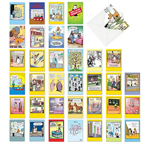 NobleWorks - 36 Funny Mixed Occasion Cards Boxed - Adult Bulk Notecard Assortment, Fun Cartoon Greeting Cards - Favorite Toons Collection AC6740XXG-B1x36