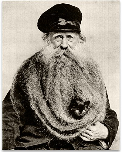 Quirky Kitten Hiding in Old Mans Giant Beard Bizarre Strange Weird Vintage Photo - 11x14 Unframed Print - Perfect Vintage Home Decor Under $15