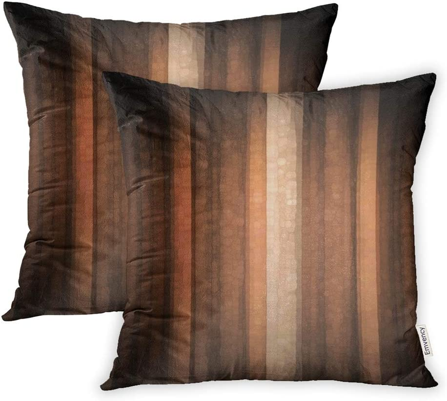 Emvency Pack free shipping of 2 Throw Pillow Covers Print P Regular discount Polyester Zippered
