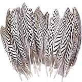 Sowder 10pcs Silver Pheasant Plumage Feathers 7-10 Inches Home Wedding Decoration