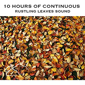 10 Hours of Continuous Rustling Leaves Sound