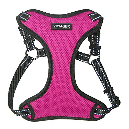 Best Pet Supplies Voyager Step-in Flex Dog Harness - All Weather Mesh, Step in Adjustable Harness for Small and Medium Dogs Fuchsia, Medium
