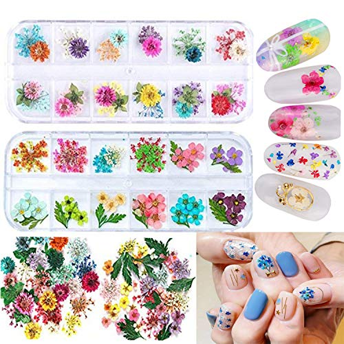 Mini Nail Dried Flowers, 24 Colors Dry Flowers for Nail Art, Mini Real Natural Flowers Nail Art Supplies 3D Applique Nail Decoration Sticker for Tips Manicure Decor (Gypsophila Flowers Leaves)