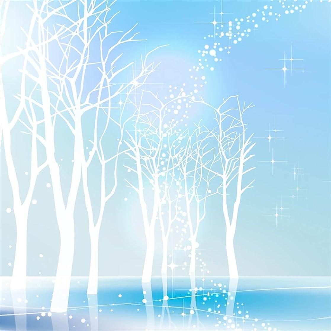 バウンス冒険者ジャンプポスター ウォールステッカー 正方形 シール式ステッカー 飾り 60×60cm Msize 壁 インテリア おしゃれ 剥がせる wall sticker poster その他 雪景色 水色 001451