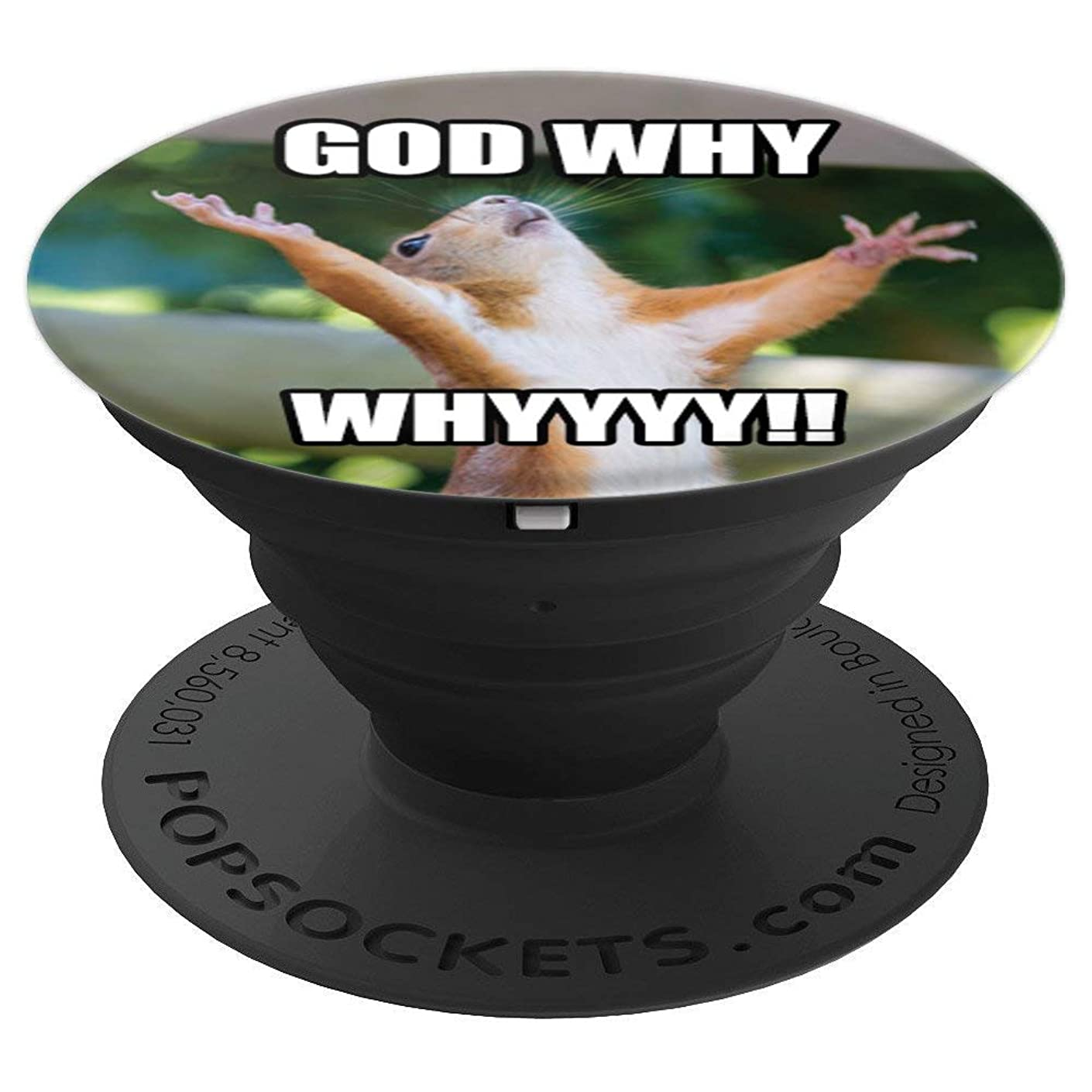 Funny 'God Why' Squirrel - Phone Mount & Holder Knob 2562 - PopSockets Grip and Stand for Phones and Tablets