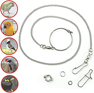 ebamaz Pet Bird Leash Parrot Foot Chain Stainless Steel 304 Anklet Ring (Model 7, 6.5mm)