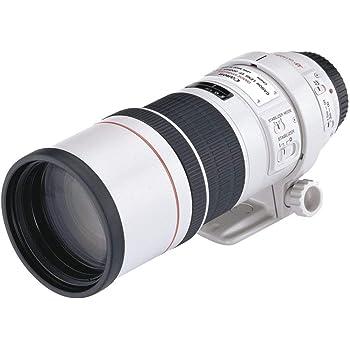 Canon EF 300 MM F4L IS USM - Objetivo para cámaras Canon (8 Hojas ...
