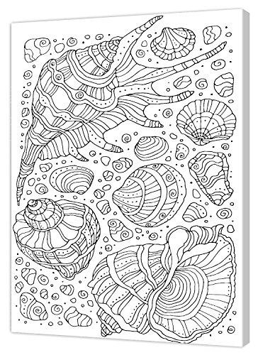Pintcolor 7816.0 châssis avec Toile imprimée à colorier, Bois de Sapin, Blanc/Noir, 40 x 50 x 3,5 cm