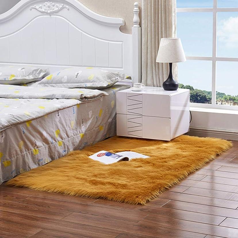 コンプリート高いライラック屋内 スリップ スーパーソフト シャギー ラグ, 絹のような 玄関マットラグ 装飾的なラグ 高速乾燥 プラシ天のカーペット 洗える 床用 ベッド-ブラウン 60x150cm(24x59inch)