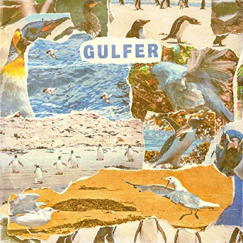 Album Art for Gulfer (Beer & Black Swirl Color Vinyl) by GULFER