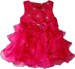 FKKFYY 0-24 Months Baby Flower Girl Dress Kids Ruffles Lace Party Wedding Dresses
