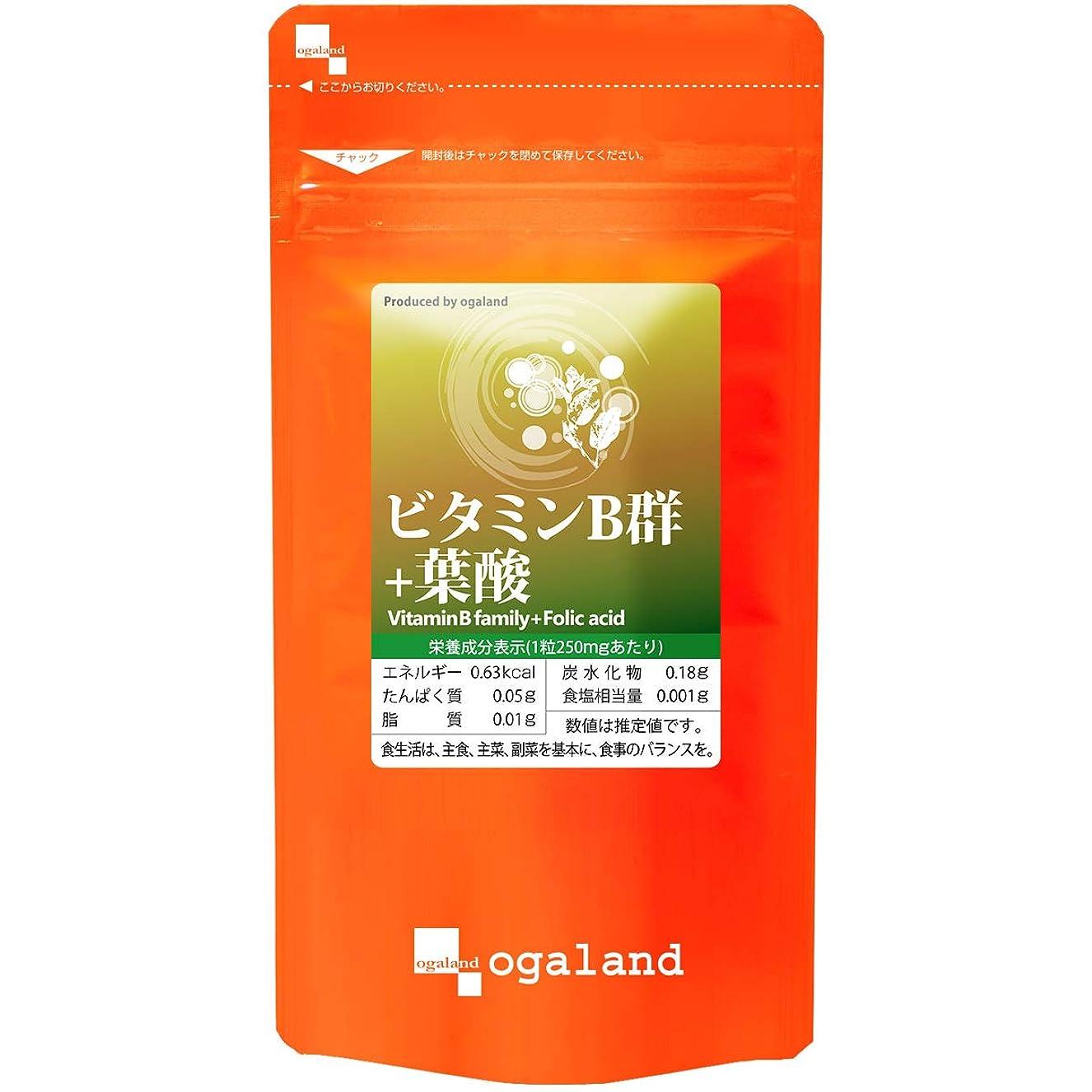 支店ゲストシャイニングお徳用 ビタミンB群 + 葉酸 (270粒/約3ヶ月分)