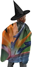 YUIOP Deluxe Halloween Children Costume Color Bird of Paradise Blossom Wizard Witch Cloak Cape Robe and Hat Set