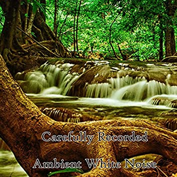 Carefully Recorded Ambient White Noise