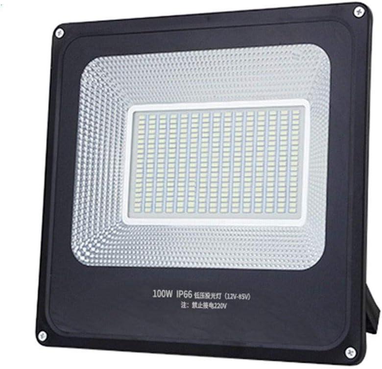 12V 48V ext/érieur IP66 /étanche /éclairage Blanc DC AC P/êche Universal march/é Bateau Batterie /éclairage de Nuit Color : 100W YROD LIGHT LED Basse Tension Projecteur 36V 24V