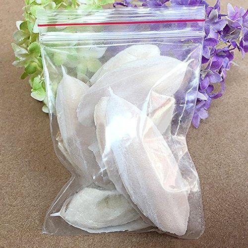 LNIMIKIY 1 Zakje Cuttle Fish Cuttlefish Bone Voor Pet Budgie Vogels Reptielen schildpad Voedsel voeden haar ornament calcium om botten te versterken, 5-8cm