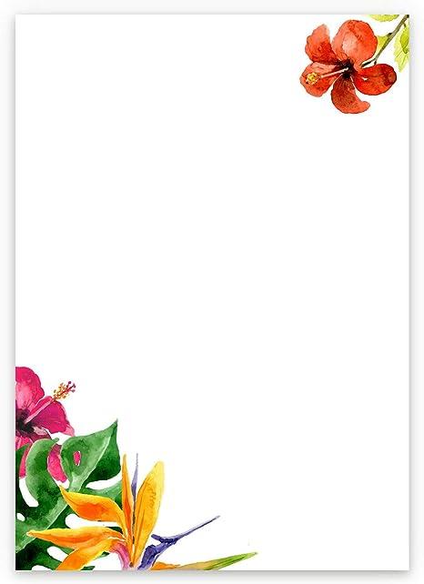 Set di 25 fogli di carta da lettere DIN A4 motivo prato floreale colorato su carta naturale ideale per inviti di matrimonio con buste DIN C6 in carta kraft verde stampabile