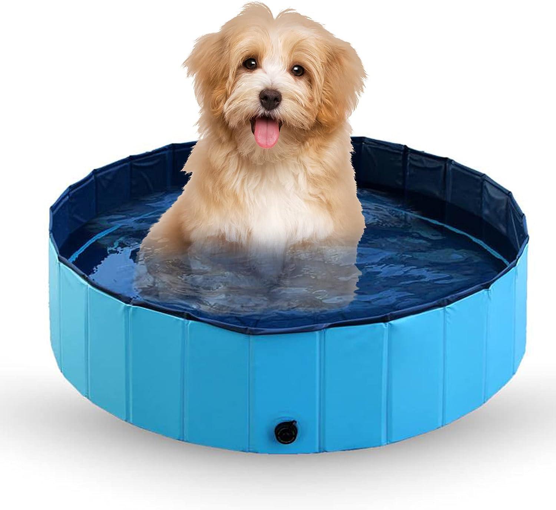 Bañera para mascotas, piscina plegable perros, plato de ducha gatos y infantil jardín cachorros, bañera PVC mascotas (piscina perros 120 cm x 30 cm, azul)