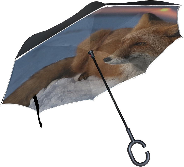 06edd4268f0d Rh Studio Ingreened Umbrella Fox Snow Sky Hunting Care Large Layer ...