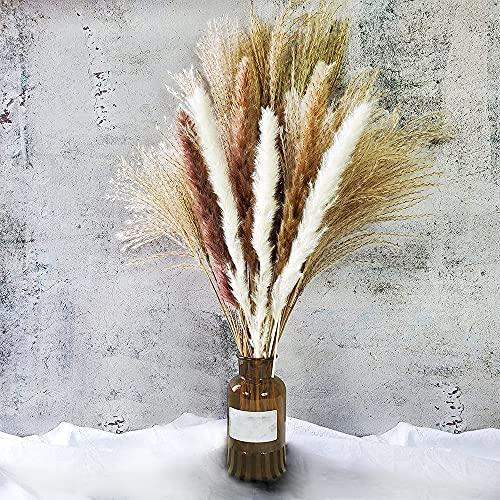 Pampas essiccato naturale erba soffice conservato fiori secchi boho decorativi fiori pampas erba per composizioni floreali nozze decorazione casa (60 pezzi)
